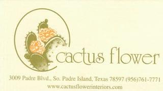Cactus Flower Interiors